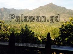 Aussicht über den Dschungel von Sabang