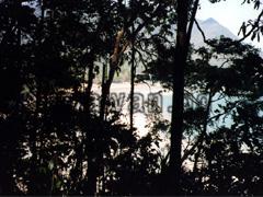 Ausblick vom Jungle Trail
