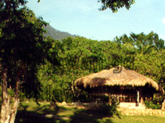 Bambua Cottages