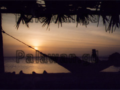 Insel Coco Loco