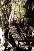 Dschungelpfadtreppe auf Palawan, Sabang