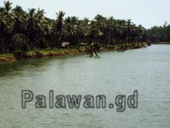 Fluss auf Palawan