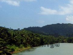 Flusslandschaft Palawan