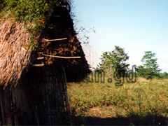 Hütte in der Landschaft