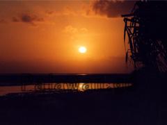 Sonnenaufgang auf Coco Loco