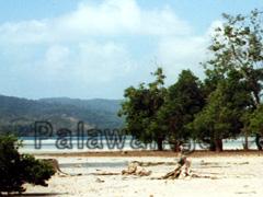 Strand von Turtle Bay